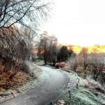 Frostig morgon utanför fönstret